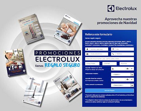 electrolux2811g