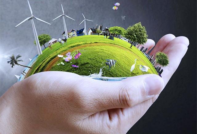Consejos para el cuidado del medio ambiente